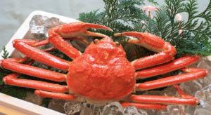 蟹,食べる,下痢